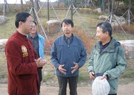 韩国七邀巨天中策划迁都环境